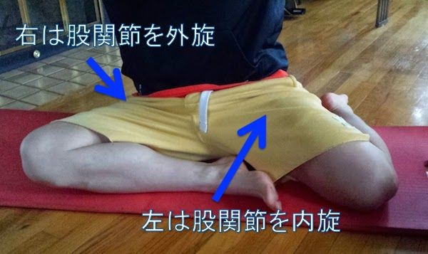 hip-lateral-rotation-within-handed