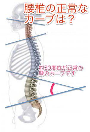 lumbar-curve