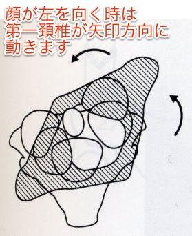 環軸関節の回旋