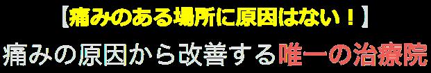 大阪府堺市の腰痛治療院  整体MAX!!(併設ABC整骨院)